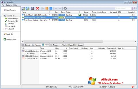 Screenshot BitTorrent for Windows 7